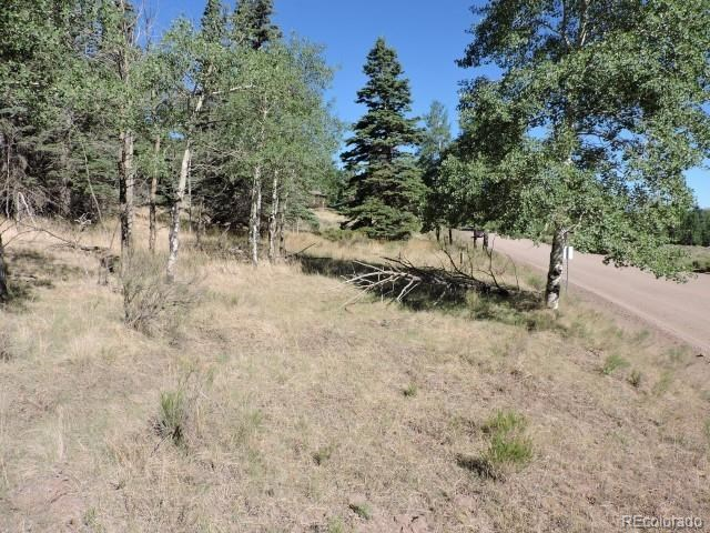 MLS# 1915008 - 1 - 435  Forbes Park Road, Fort Garland, CO 81133