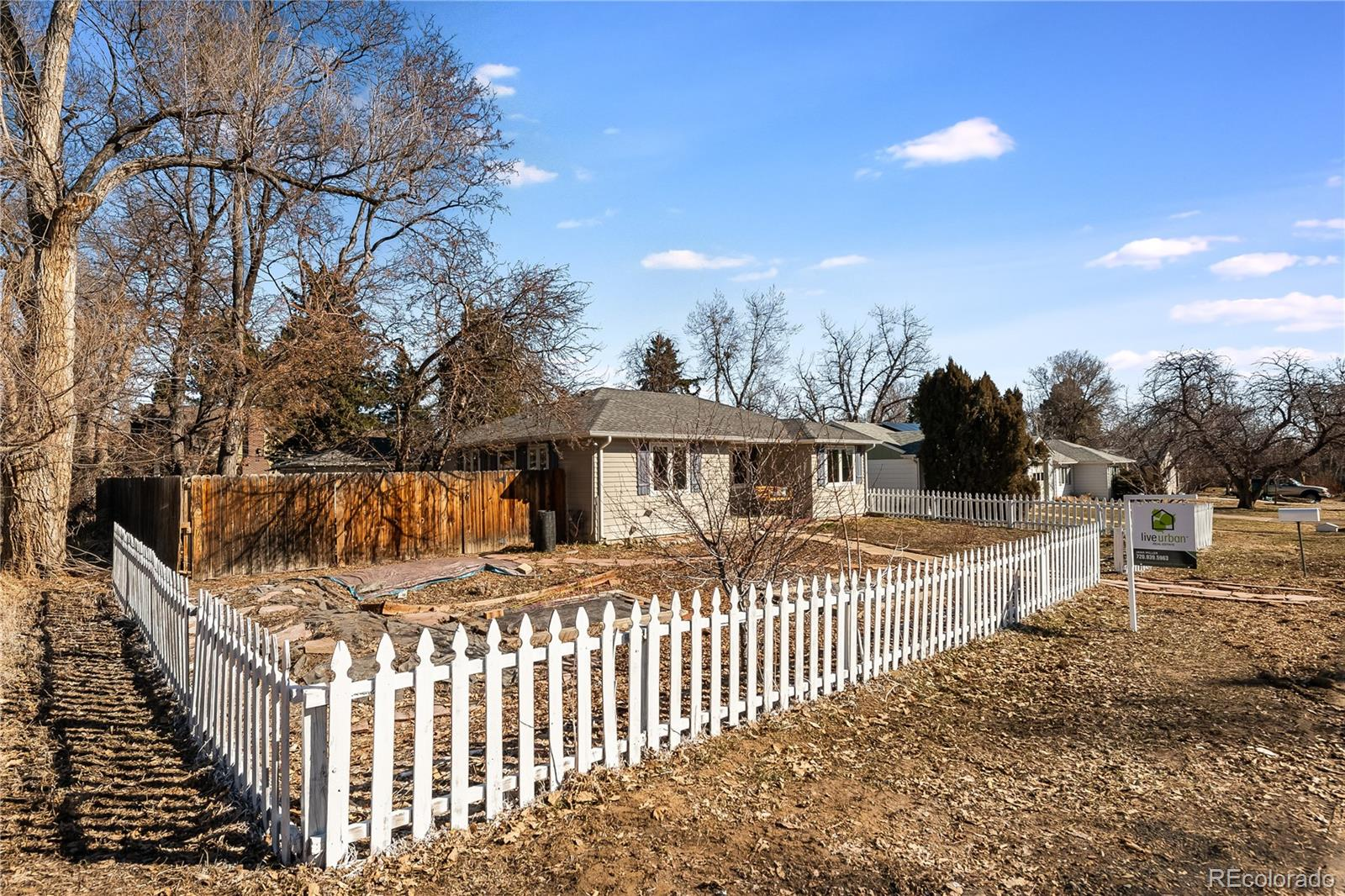 MLS# 2050120 - 3 - 7195 W 24th Place, Lakewood, CO 80214