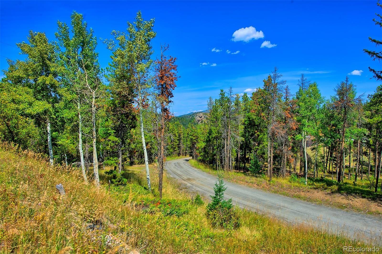 MLS# 2193114 - 2 - 1 Mountain Estate Drive, Evergreen, CO 80439