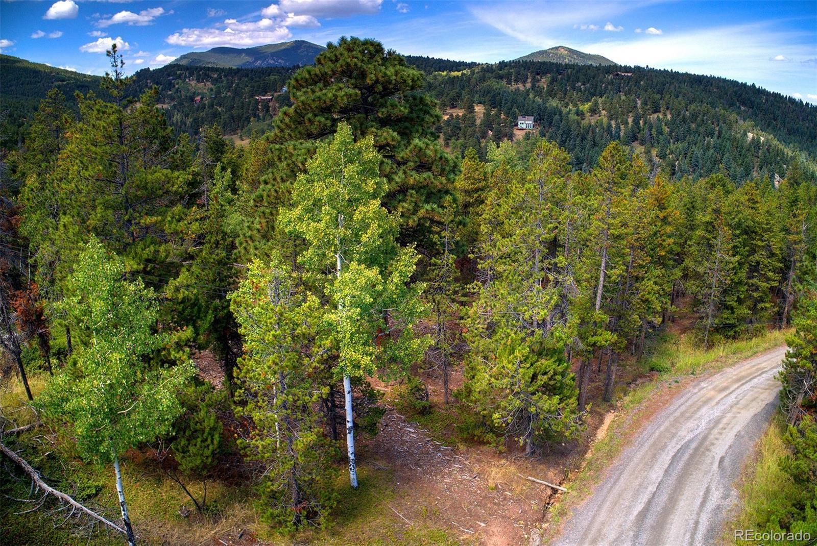MLS# 2193114 - 3 - 1 Mountain Estate Drive, Evergreen, CO 80439