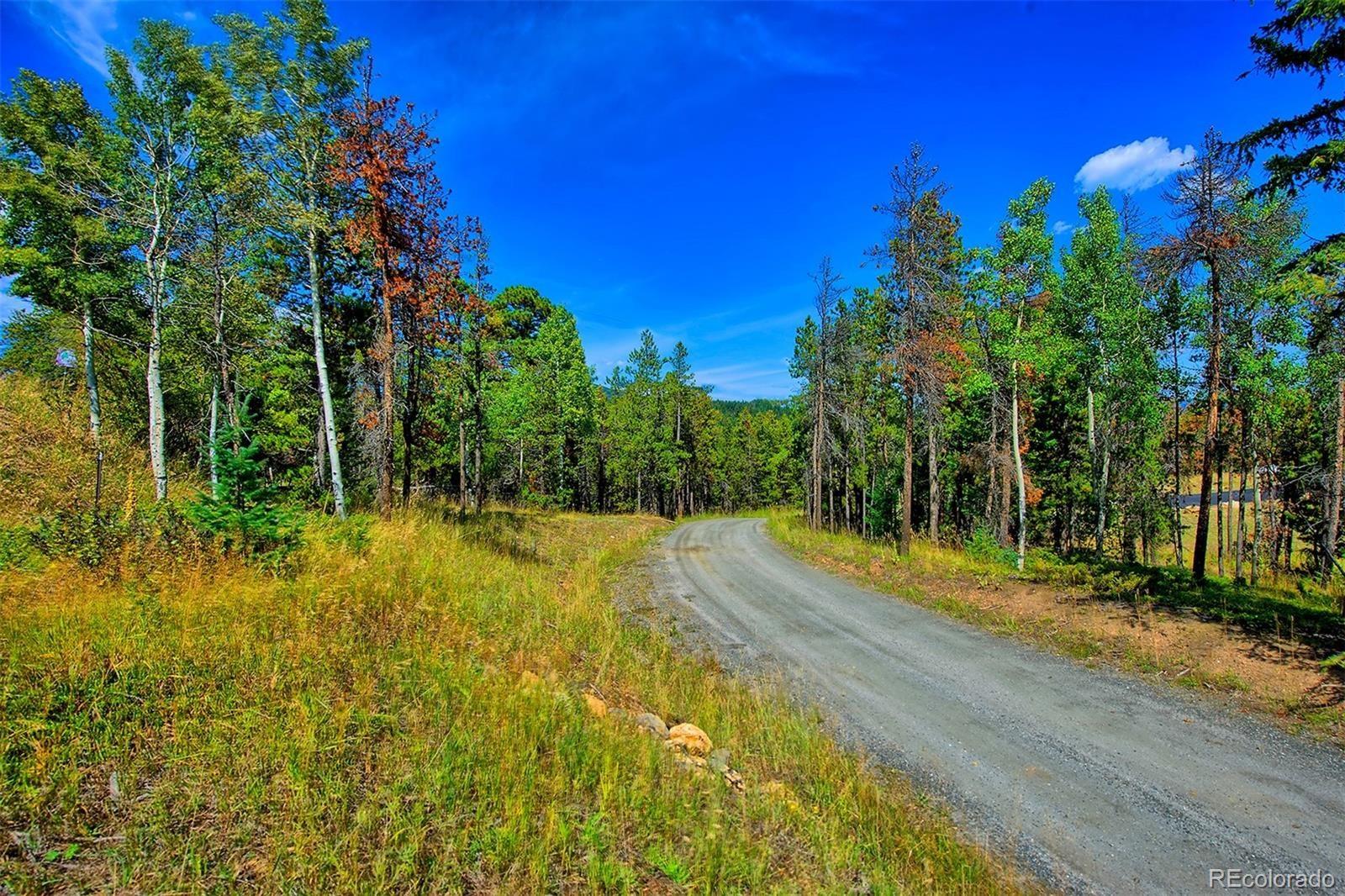 MLS# 2193114 - 5 - 1 Mountain Estate Drive, Evergreen, CO 80439