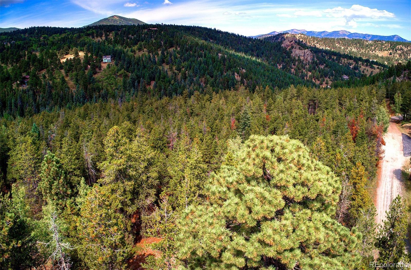 MLS# 2193114 - 6 - 1 Mountain Estate Drive, Evergreen, CO 80439