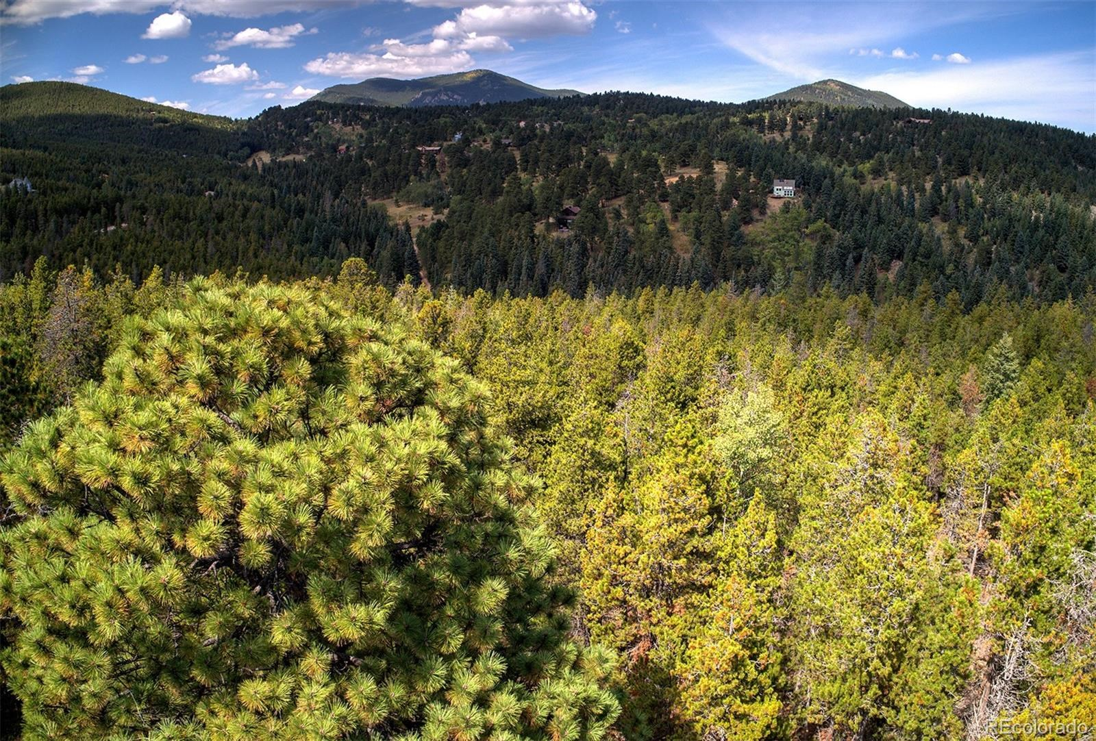 MLS# 2193114 - 8 - 1 Mountain Estate Drive, Evergreen, CO 80439