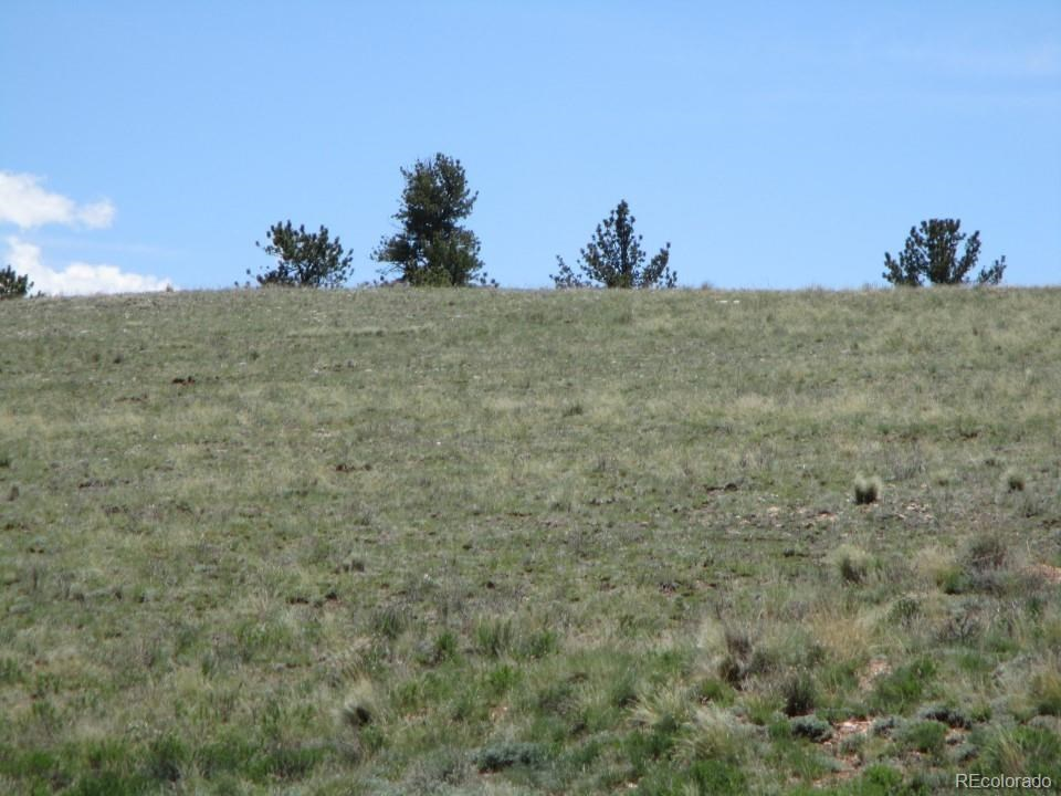 MLS# 2203756 - 23 - 627 Chase Gulch Road, Lake George, CO 80827
