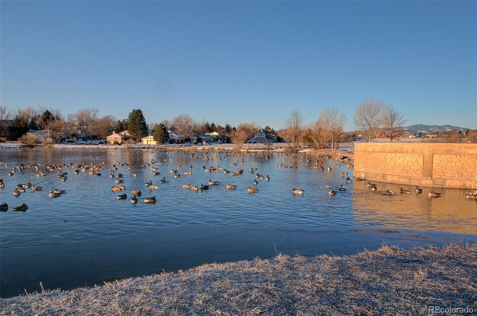 MLS# 2260867 - 38 - 6075 W 82nd Place, Arvada, CO 80003