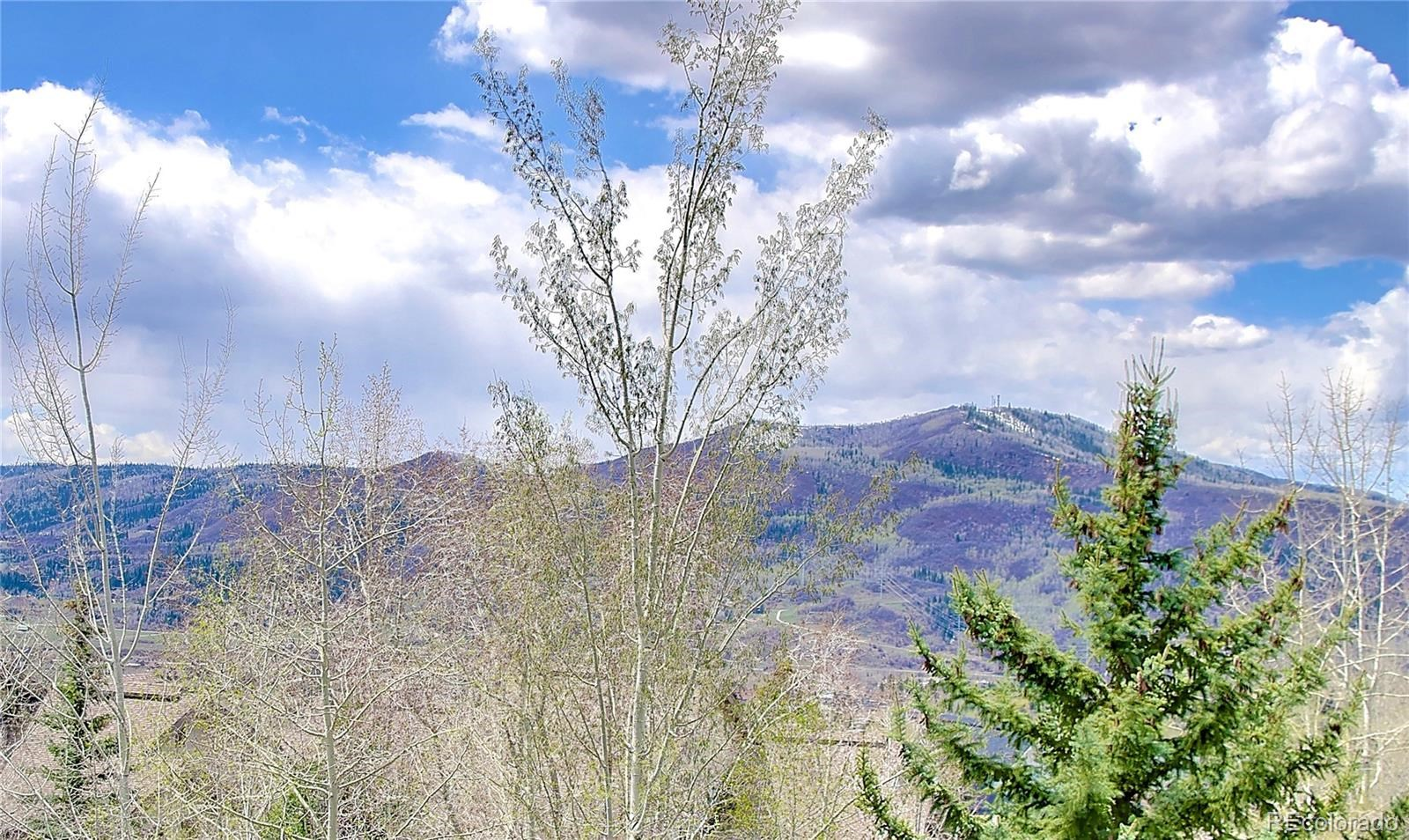 MLS# 2309963 - 13 - 1145 Overlook Drive #C1, Steamboat Springs, CO 80487