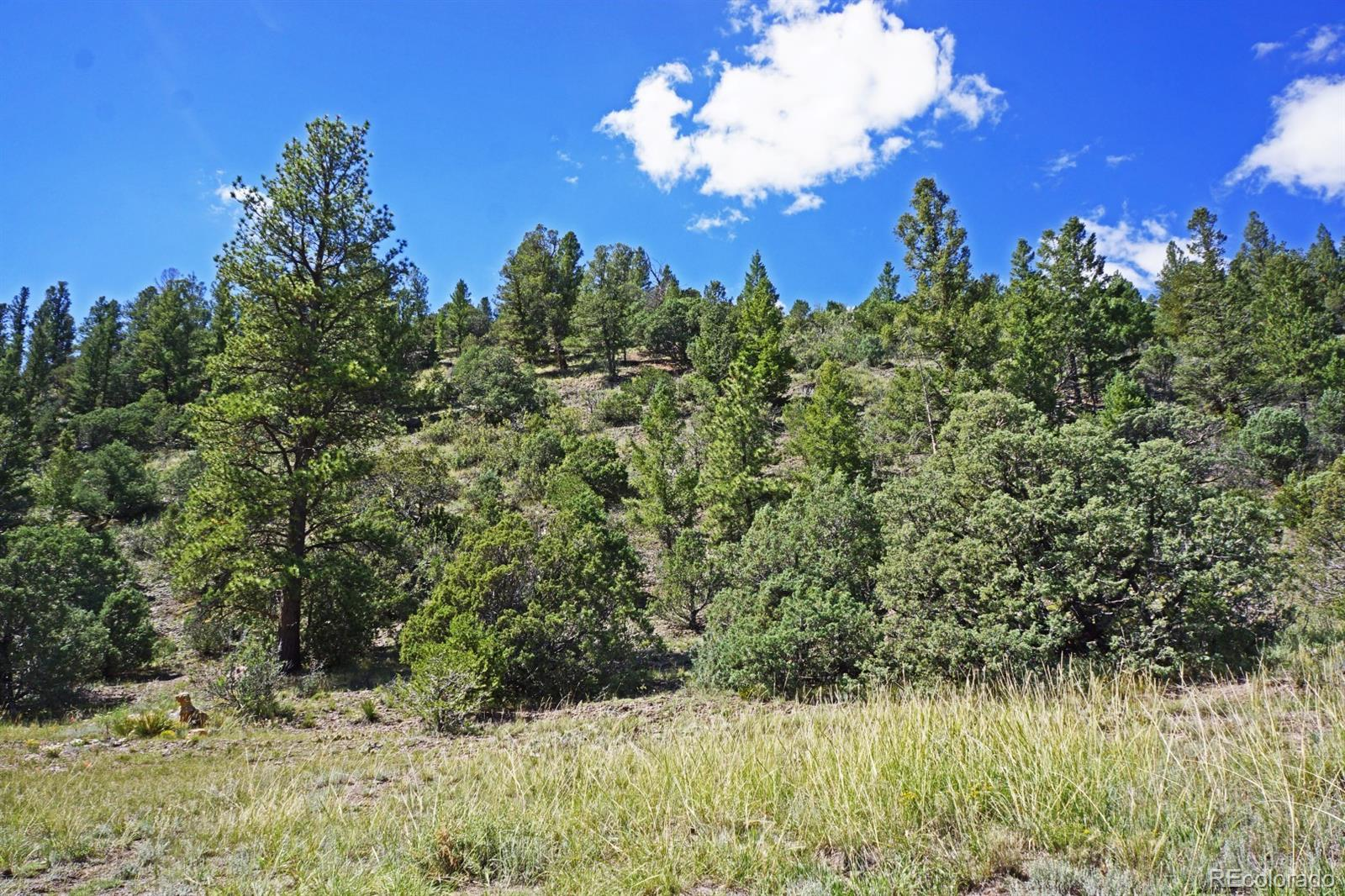 MLS# 2453864 - 28 - 49680 County Road Ll56 , Villa Grove, CO 81155