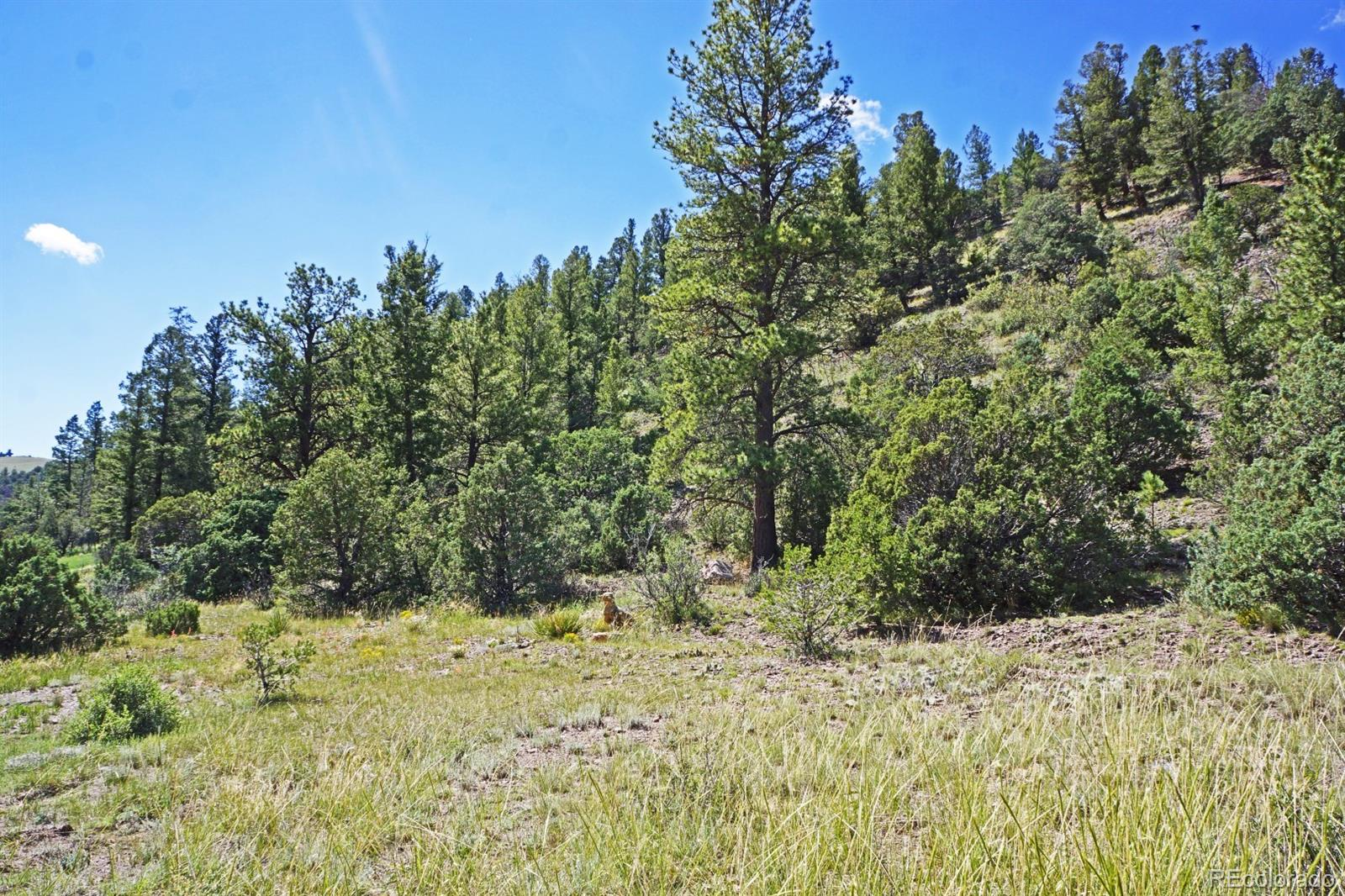 MLS# 2453864 - 29 - 49680 County Road Ll56 , Villa Grove, CO 81155