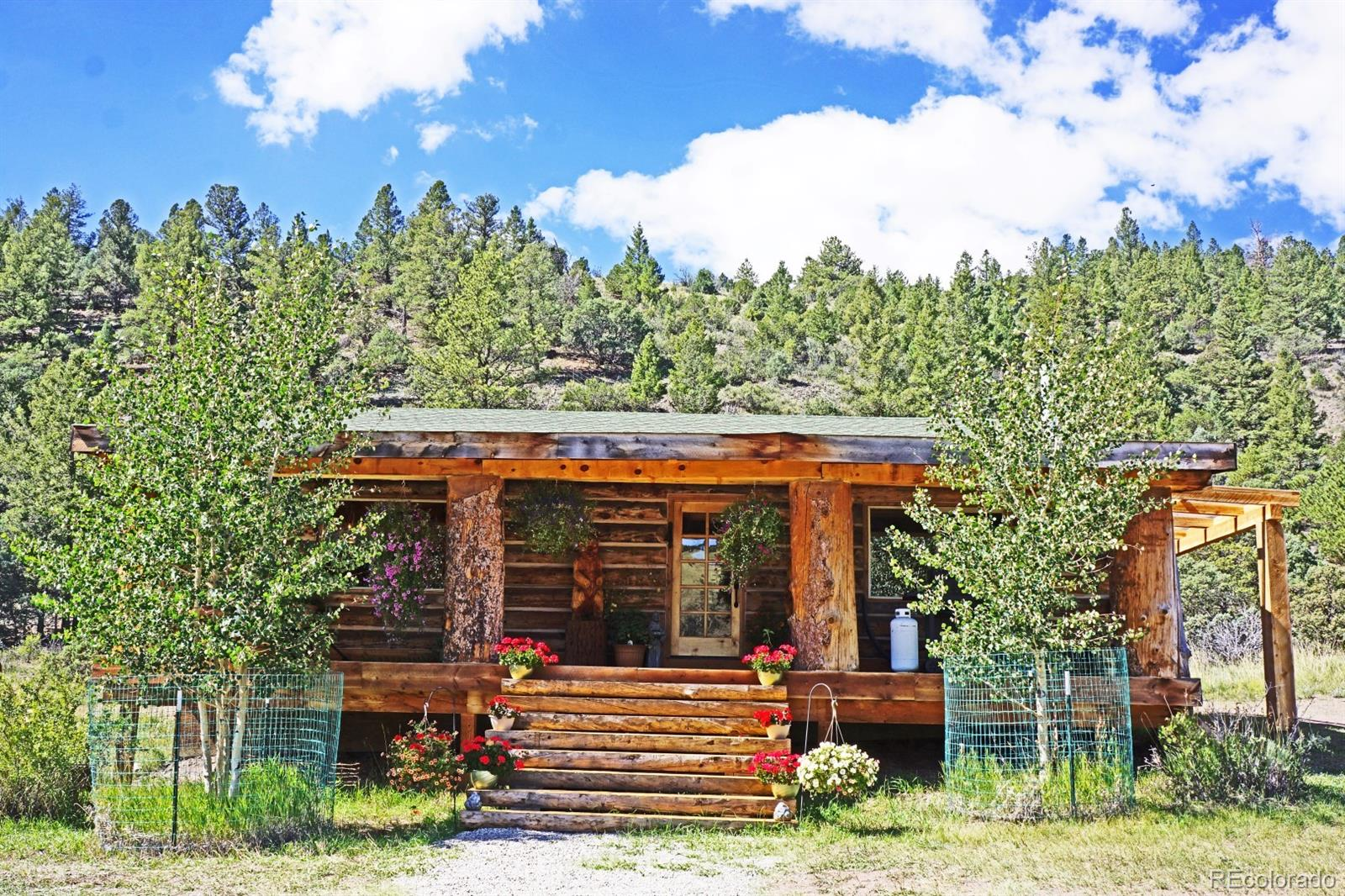MLS# 2453864 - 37 - 49680 County Road Ll56 , Villa Grove, CO 81155