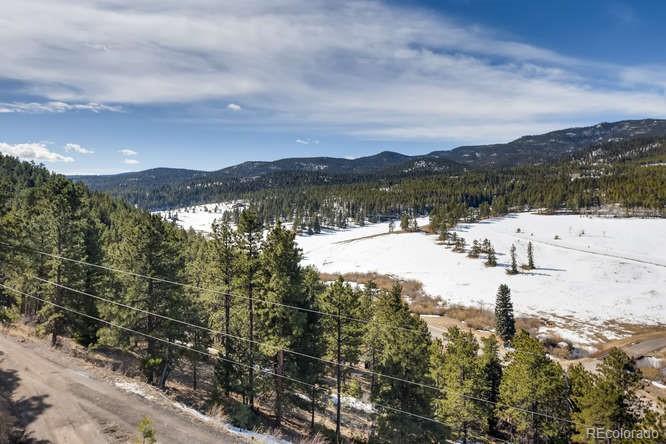MLS# 2558403 - 28 - 27341 Ridge Trail, Conifer, CO 80433