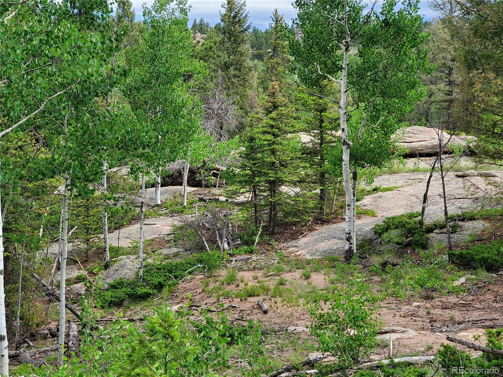 MLS# 2610058 - 71 Alpine Drive, Florissant, CO 80816