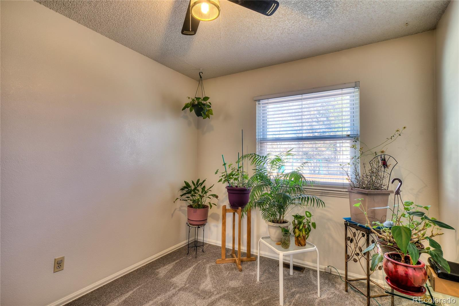 MLS# 2811379 - 17 - 9645 W David Avenue, Littleton, CO 80128