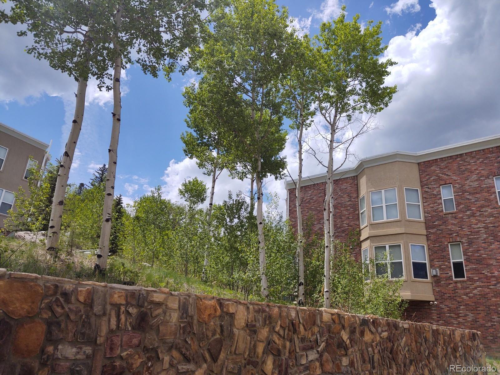 MLS# 2829702 - 24 - 790 Jake Drive, Central City, CO 80427