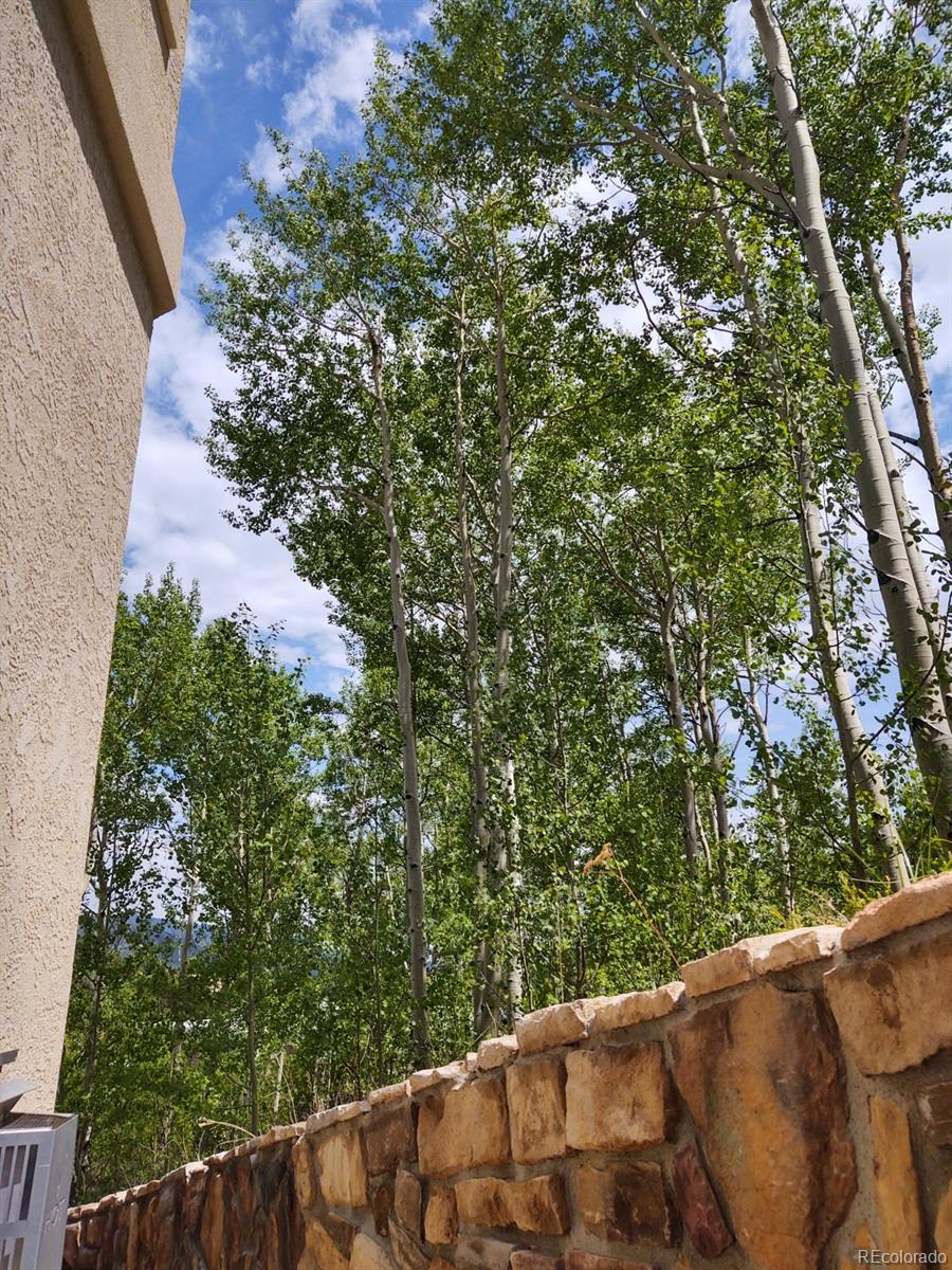 MLS# 2829702 - 25 - 790 Jake Drive, Central City, CO 80427