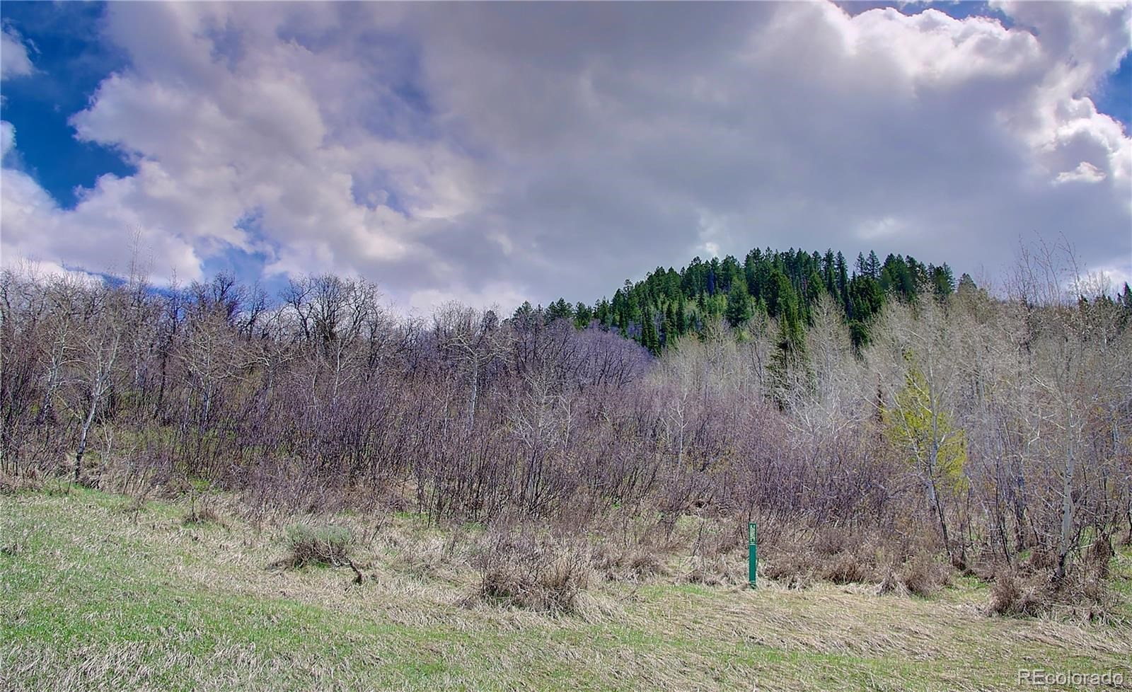 MLS# 2865478 - 4 - 2245 Bear Drive, Steamboat Springs, CO 80487