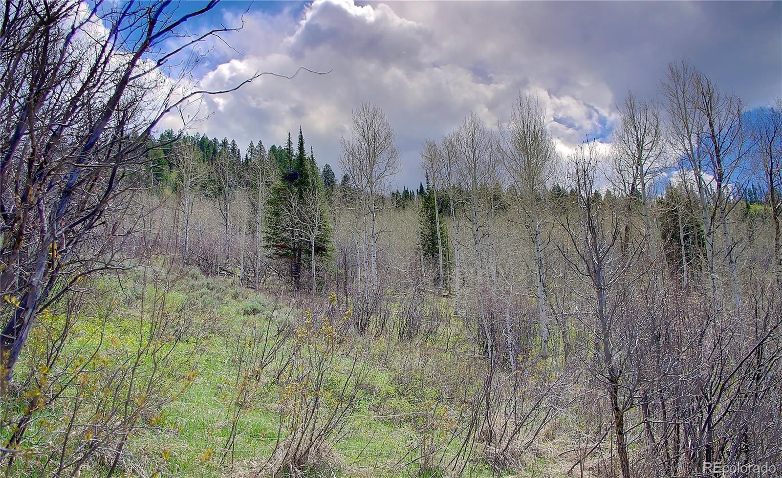MLS# 2865478 - 6 - 2245 Bear Drive, Steamboat Springs, CO 80487