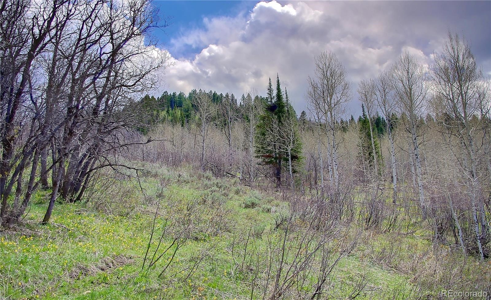 MLS# 2865478 - 7 - 2245 Bear Drive, Steamboat Springs, CO 80487