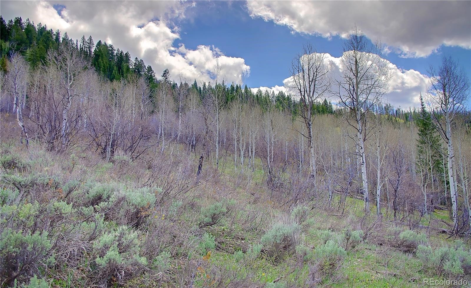 MLS# 2865478 - 10 - 2245 Bear Drive, Steamboat Springs, CO 80487