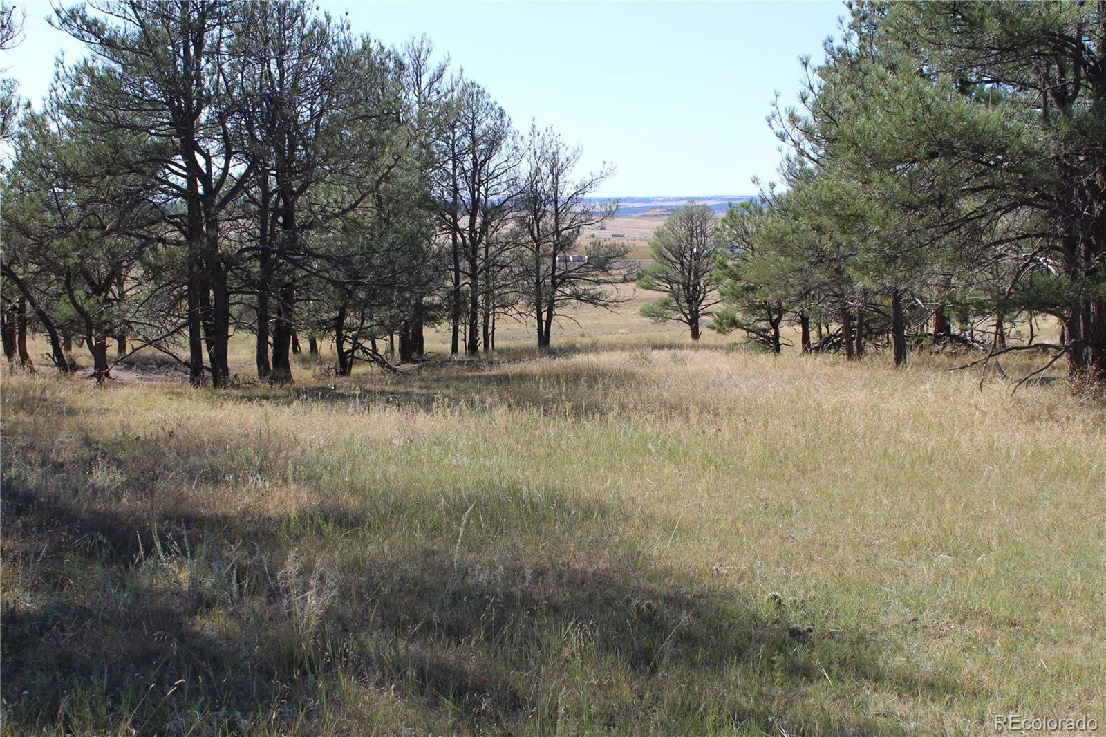 MLS# 2877174 - 11 - Cattle Circle, Kiowa, CO 80117