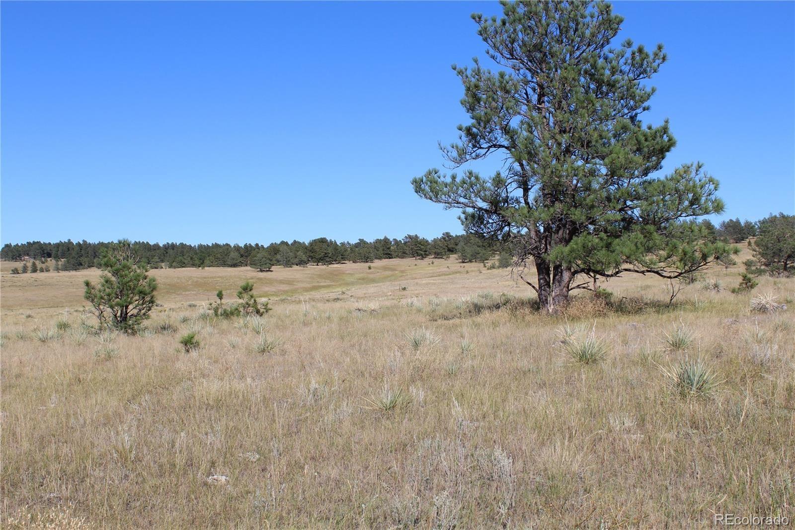 MLS# 2877174 - 13 - Cattle Circle, Kiowa, CO 80117