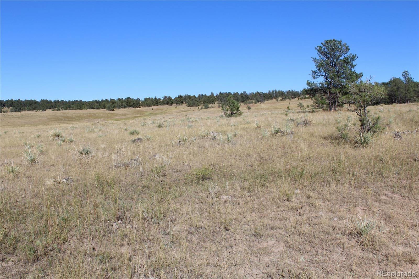MLS# 2877174 - 15 - Cattle Circle, Kiowa, CO 80117