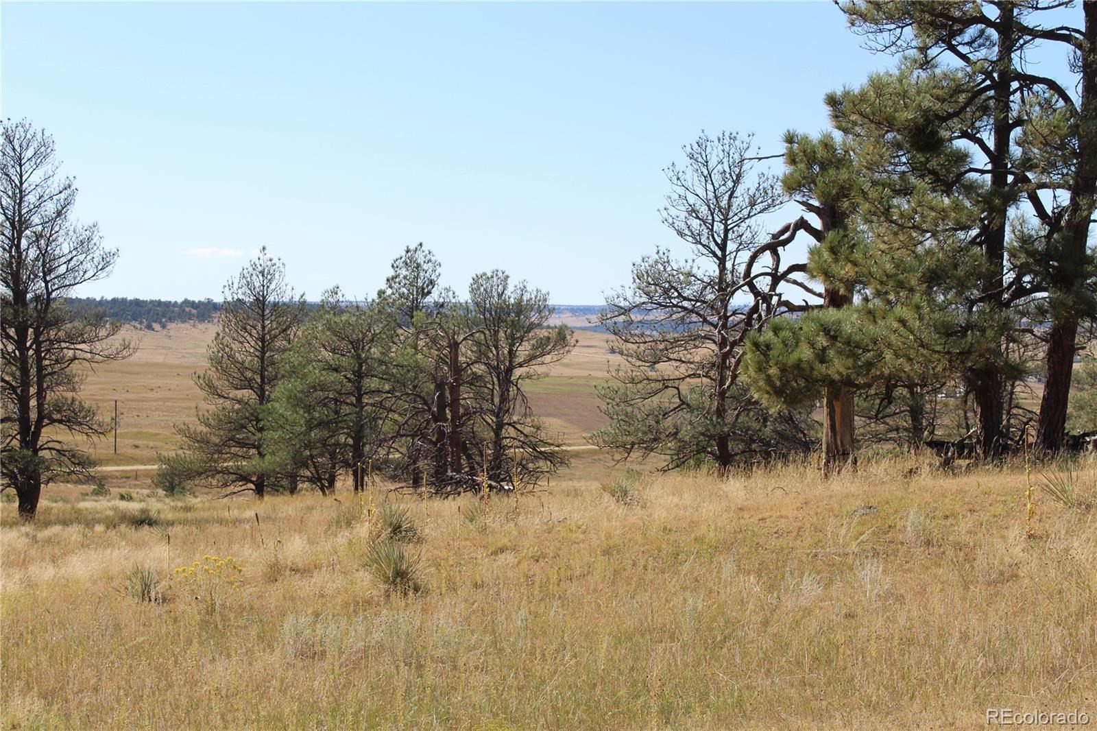 MLS# 2877174 - 3 - Cattle Circle, Kiowa, CO 80117