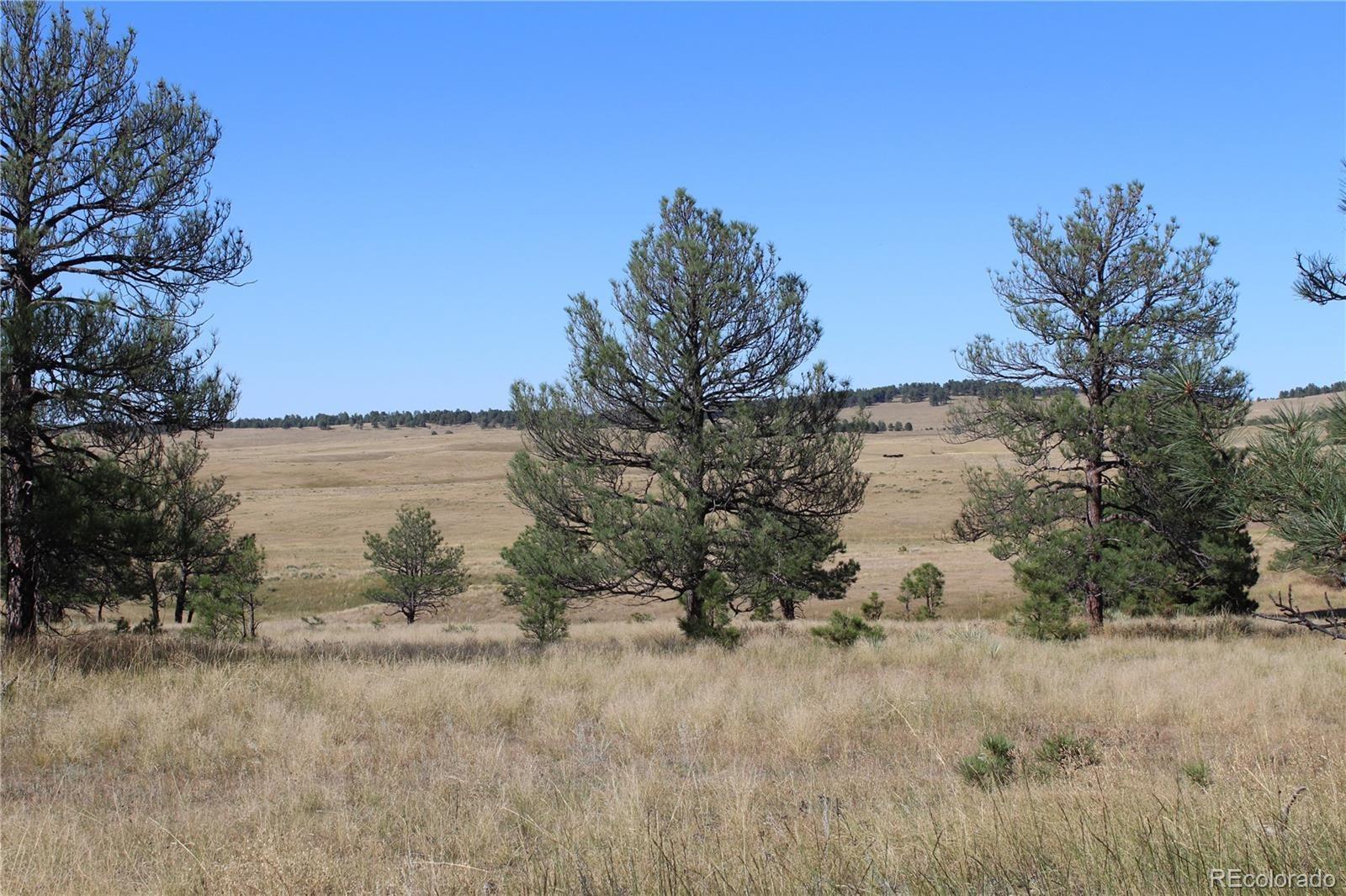 MLS# 2877174 - 7 - Cattle Circle, Kiowa, CO 80117
