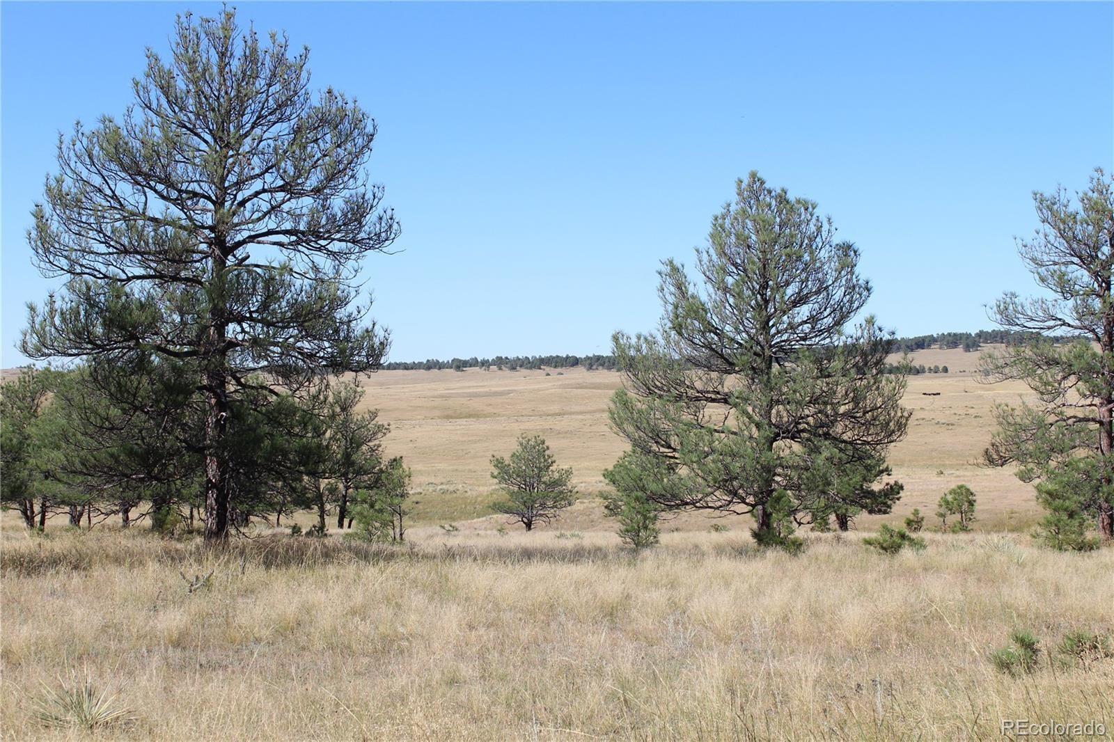 MLS# 2877174 - 8 - Cattle Circle, Kiowa, CO 80117