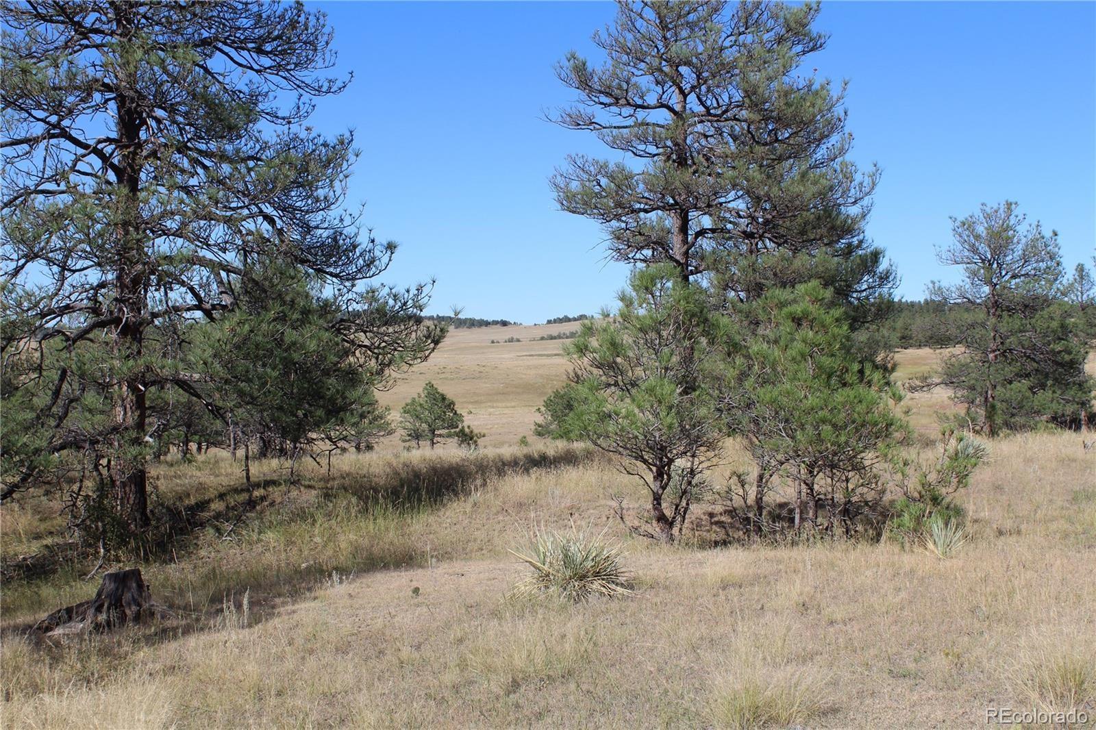 MLS# 2877174 - 10 - Cattle Circle, Kiowa, CO 80117