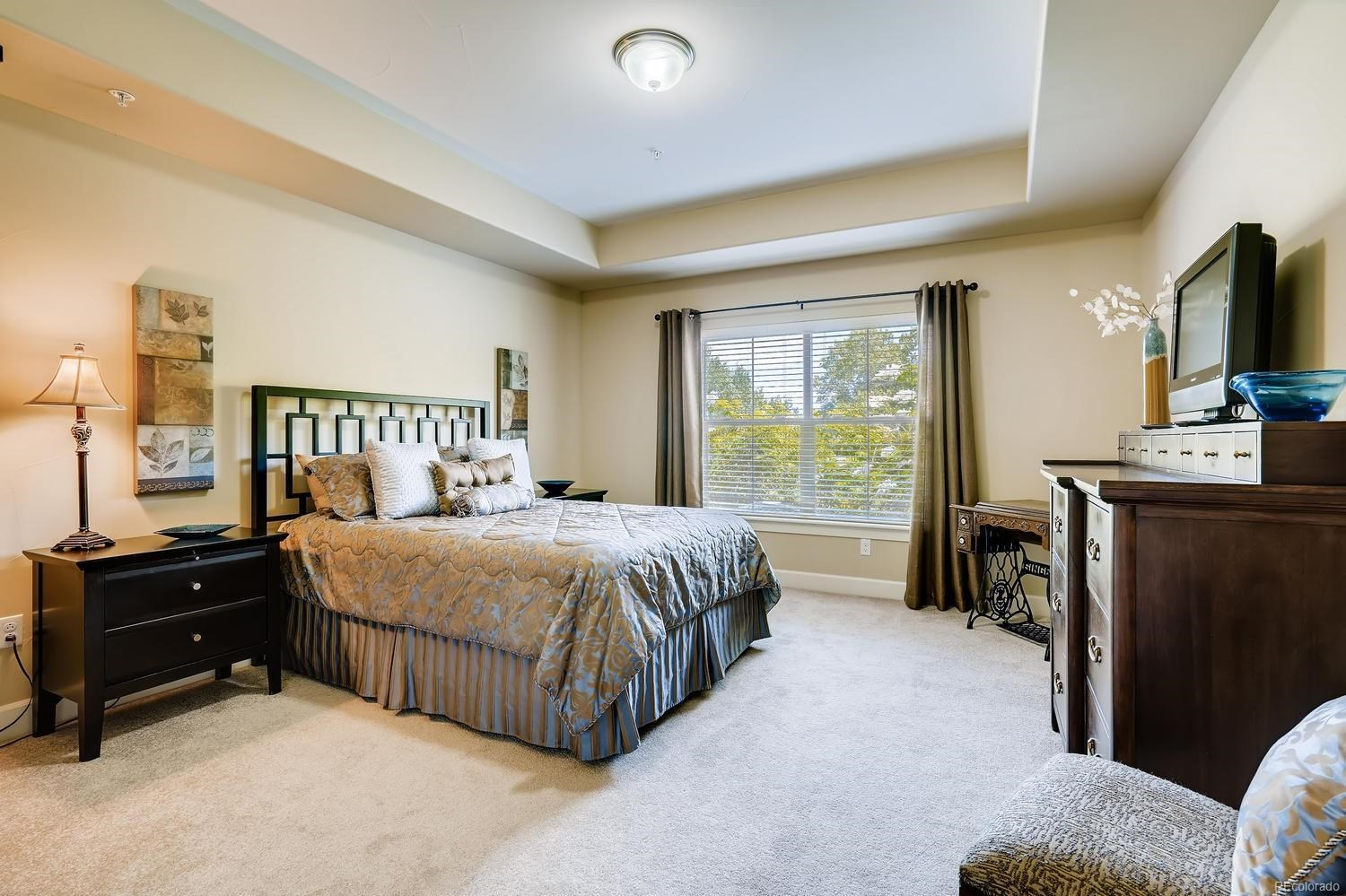 MLS# 2956952 - 22 - 2065 Primo Road #C, Highlands Ranch, CO 80129