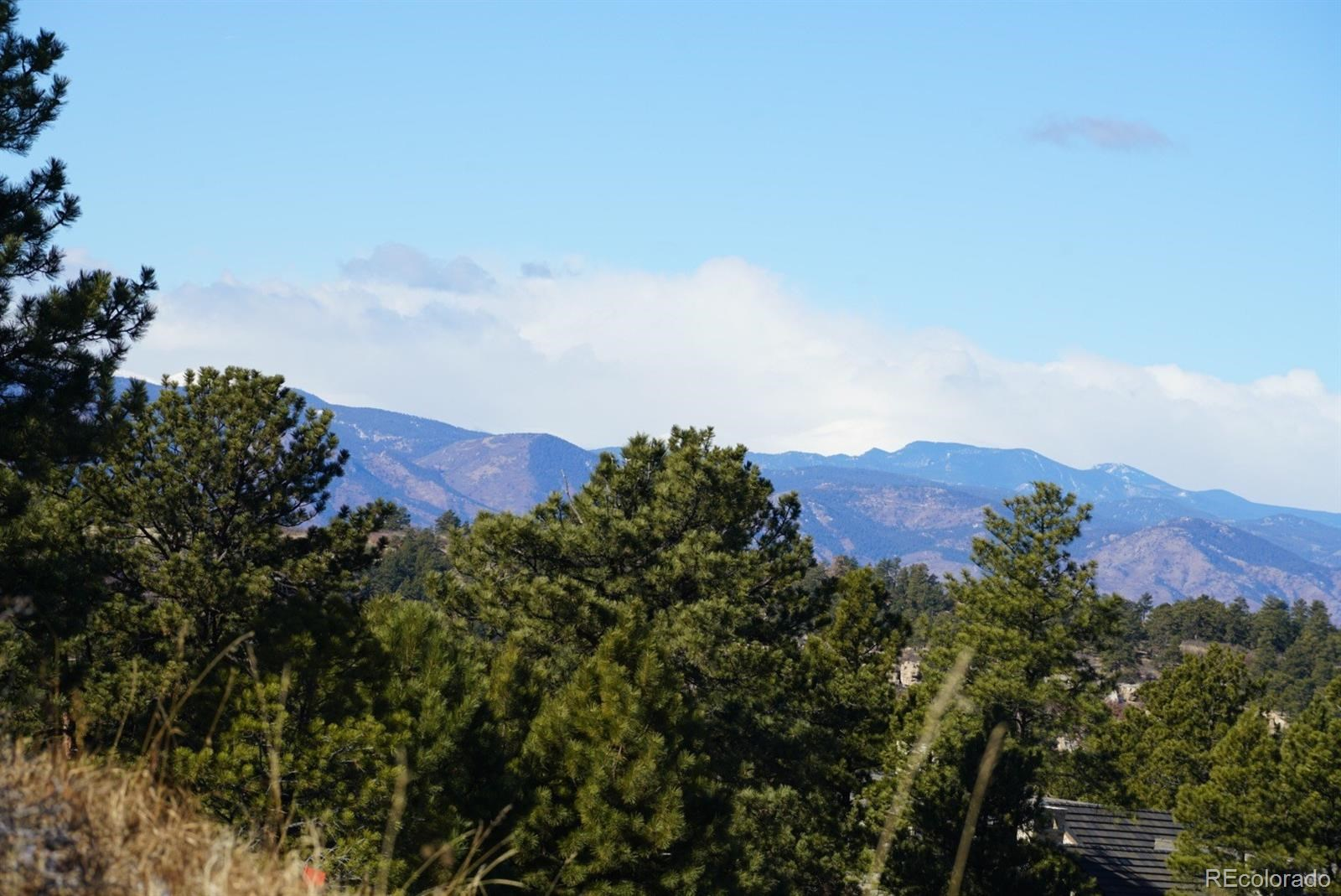 MLS# 2980484 - 4 - 992 Country Club Parkway, Castle Rock, CO 80108