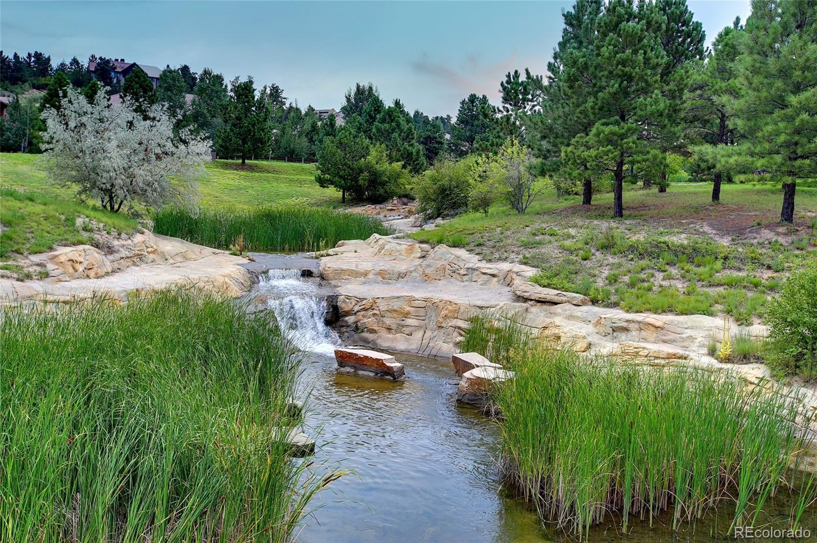 MLS# 2980484 - 9 - 992 Country Club Parkway, Castle Rock, CO 80108