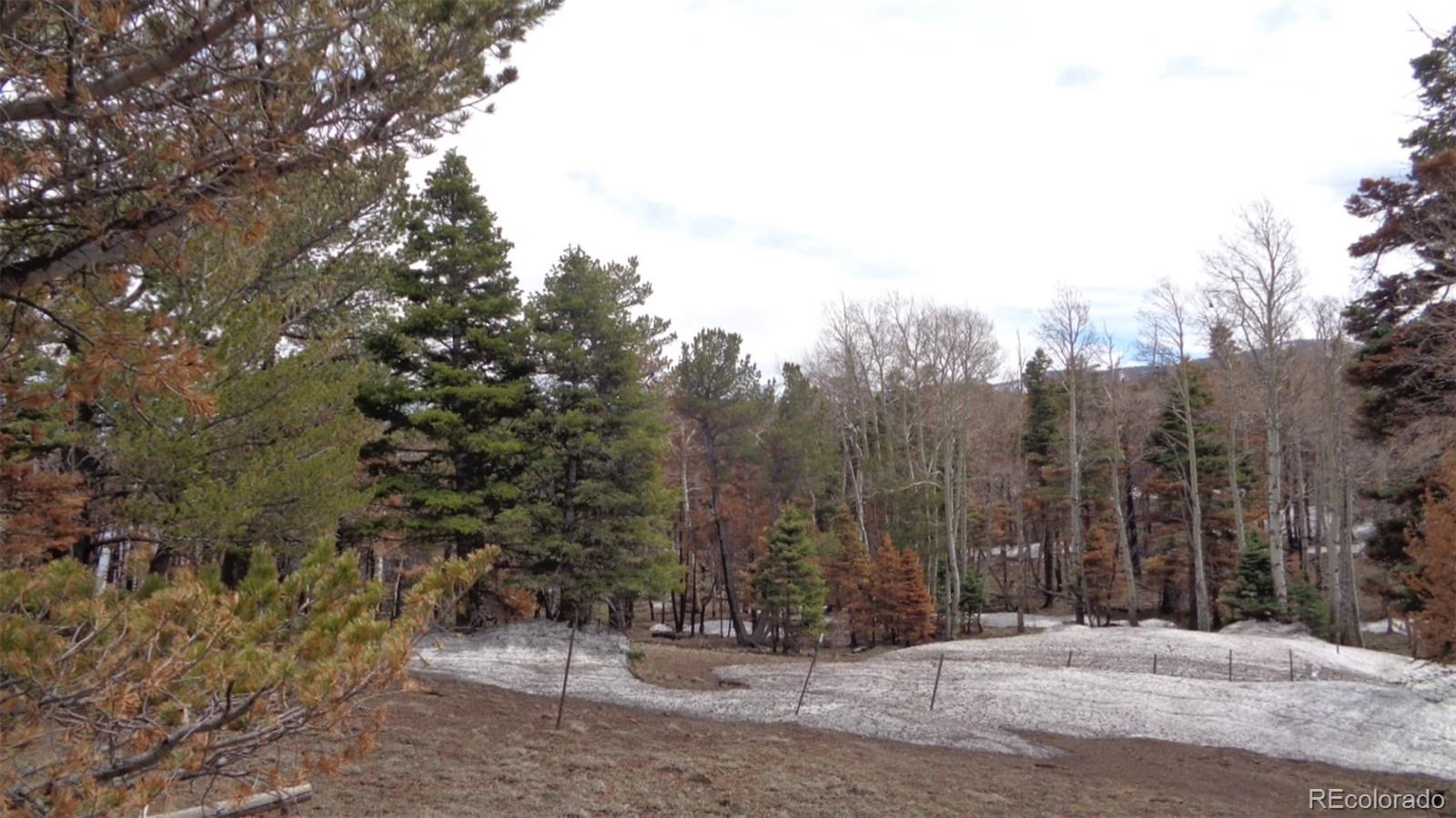 MLS# 2982549 - 2 - 2117 Packer Place, Fort Garland, CO 81133