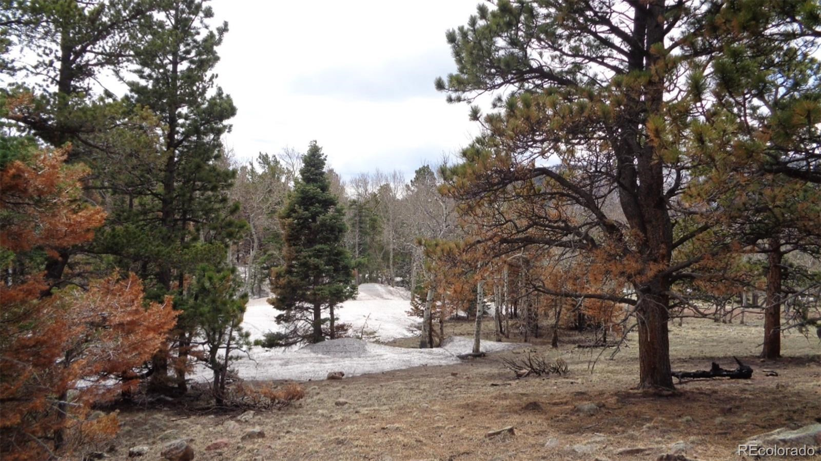 MLS# 2982549 - 5 - 2117 Packer Place, Fort Garland, CO 81133