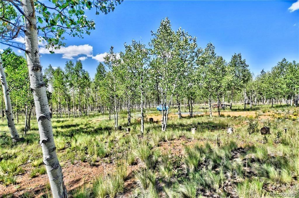 MLS# 2989932 - 1 - 55  Bear Gulch Way, Jefferson, CO 80456