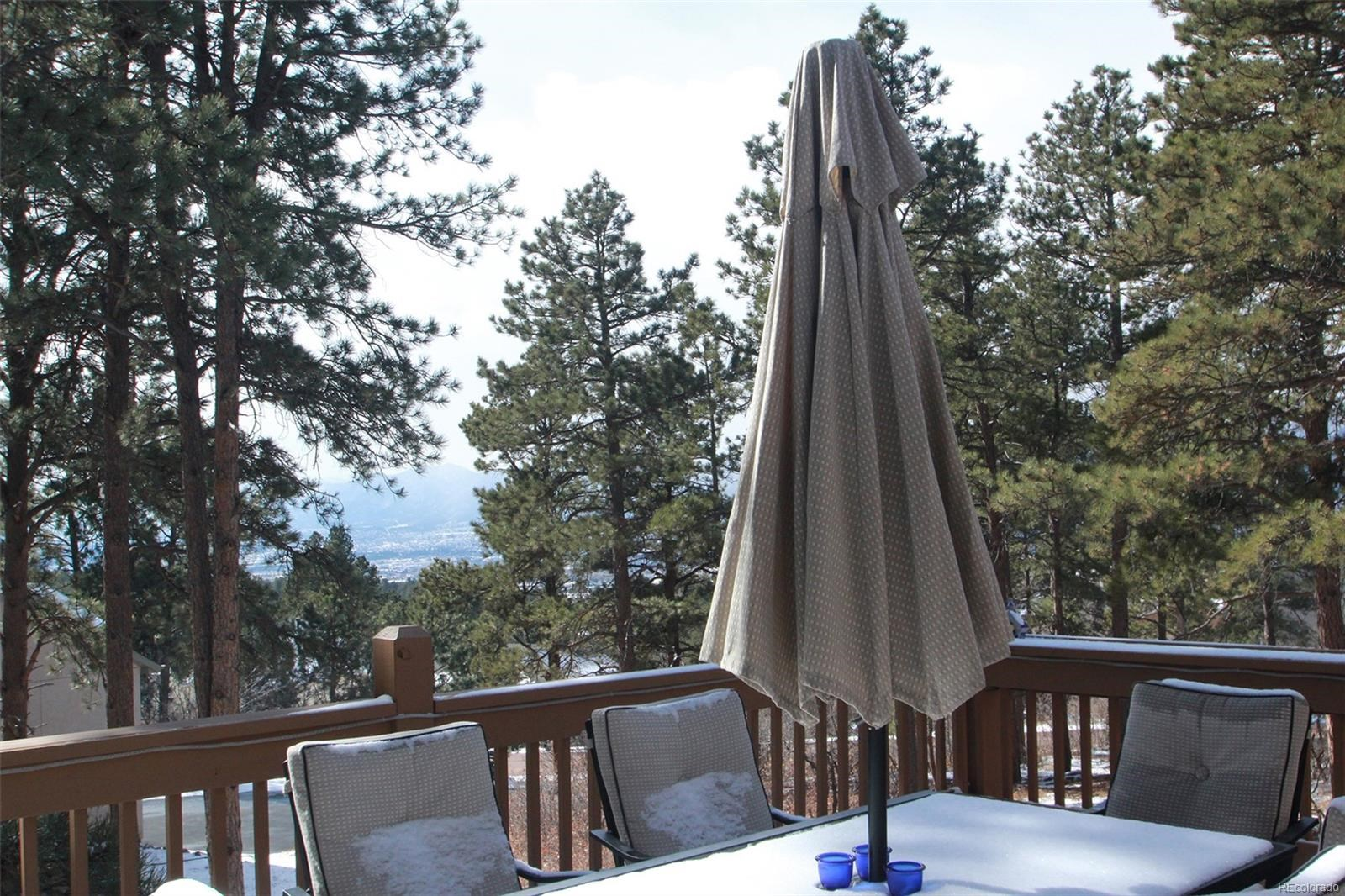 MLS# 3001328 - 26 - 1585 Capadaro Court, Monument, CO 80132