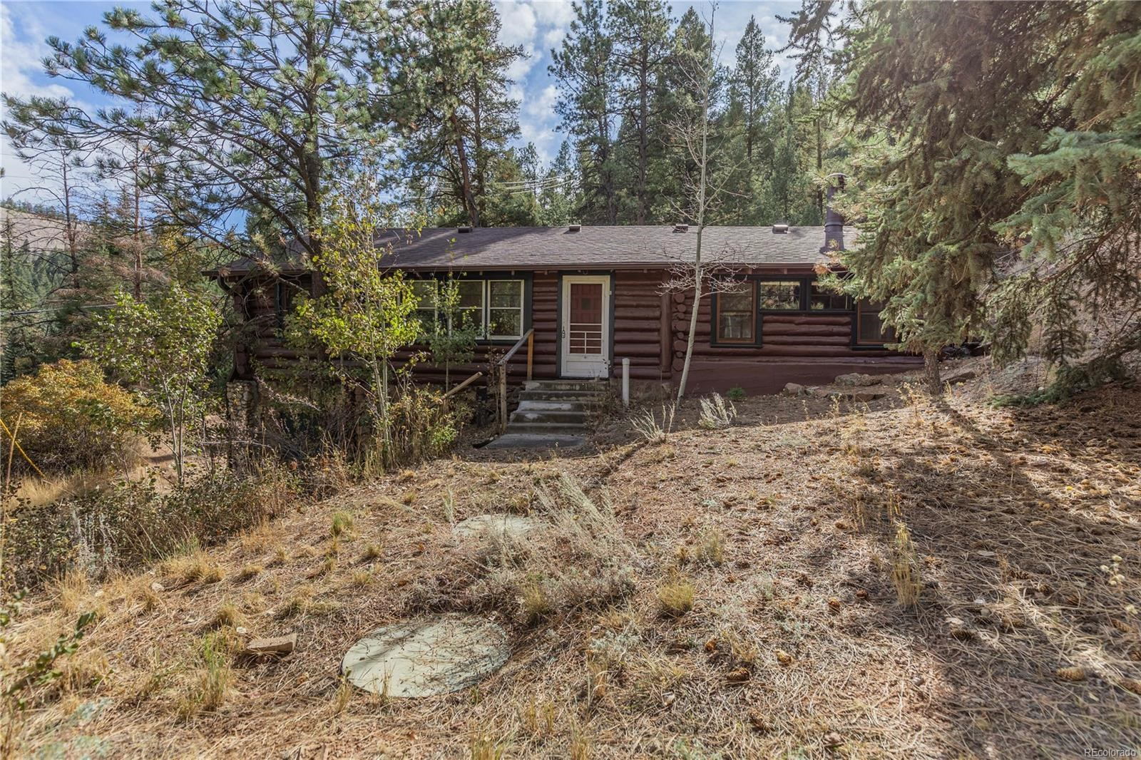 MLS# 3100431 - 25 - 15827 Old Stagecoach Road, Pine, CO 80470