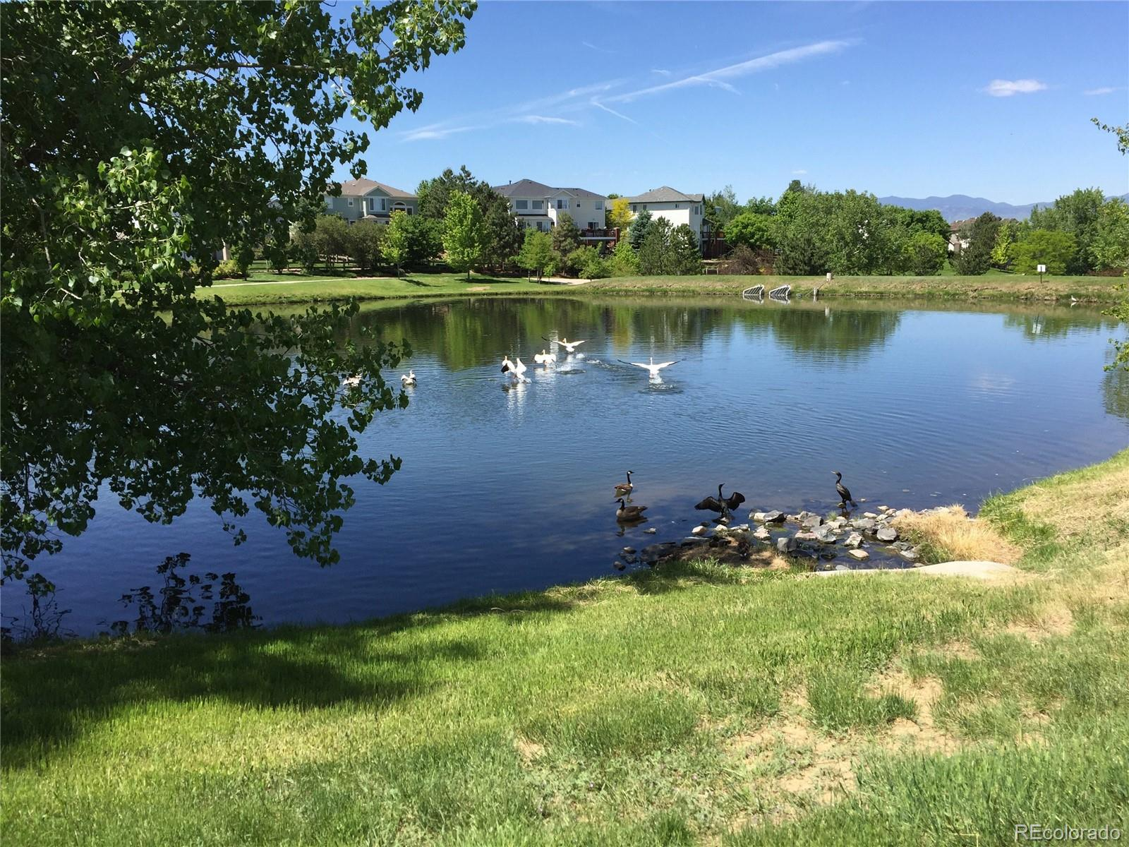 MLS# 3108775 - 33 - 3270 W 114th Circle #A, Westminster, CO 80031
