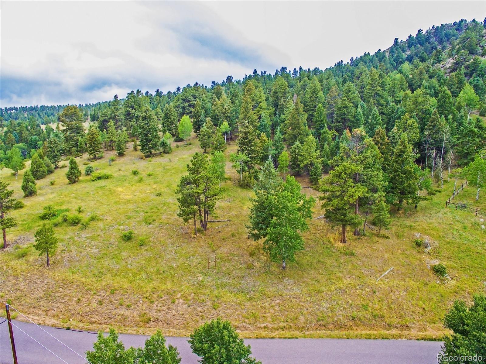 MLS# 3136640 - 18 - 14515 Reserve Road, Pine, CO 80470