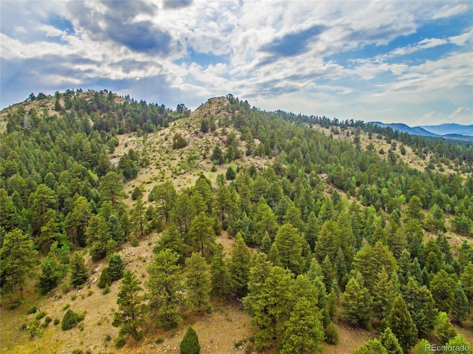 MLS# 3136640 - 10 - 14515 Reserve Road, Pine, CO 80470