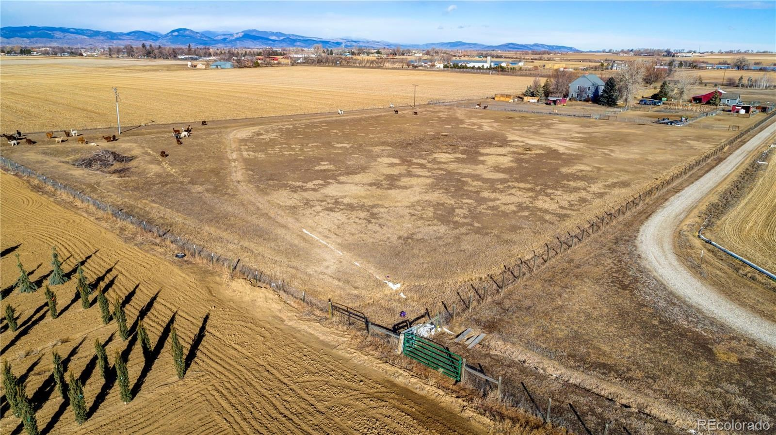 MLS# 3198319 - 2 - 548 E State Highway 56 A , Berthoud, CO 80513