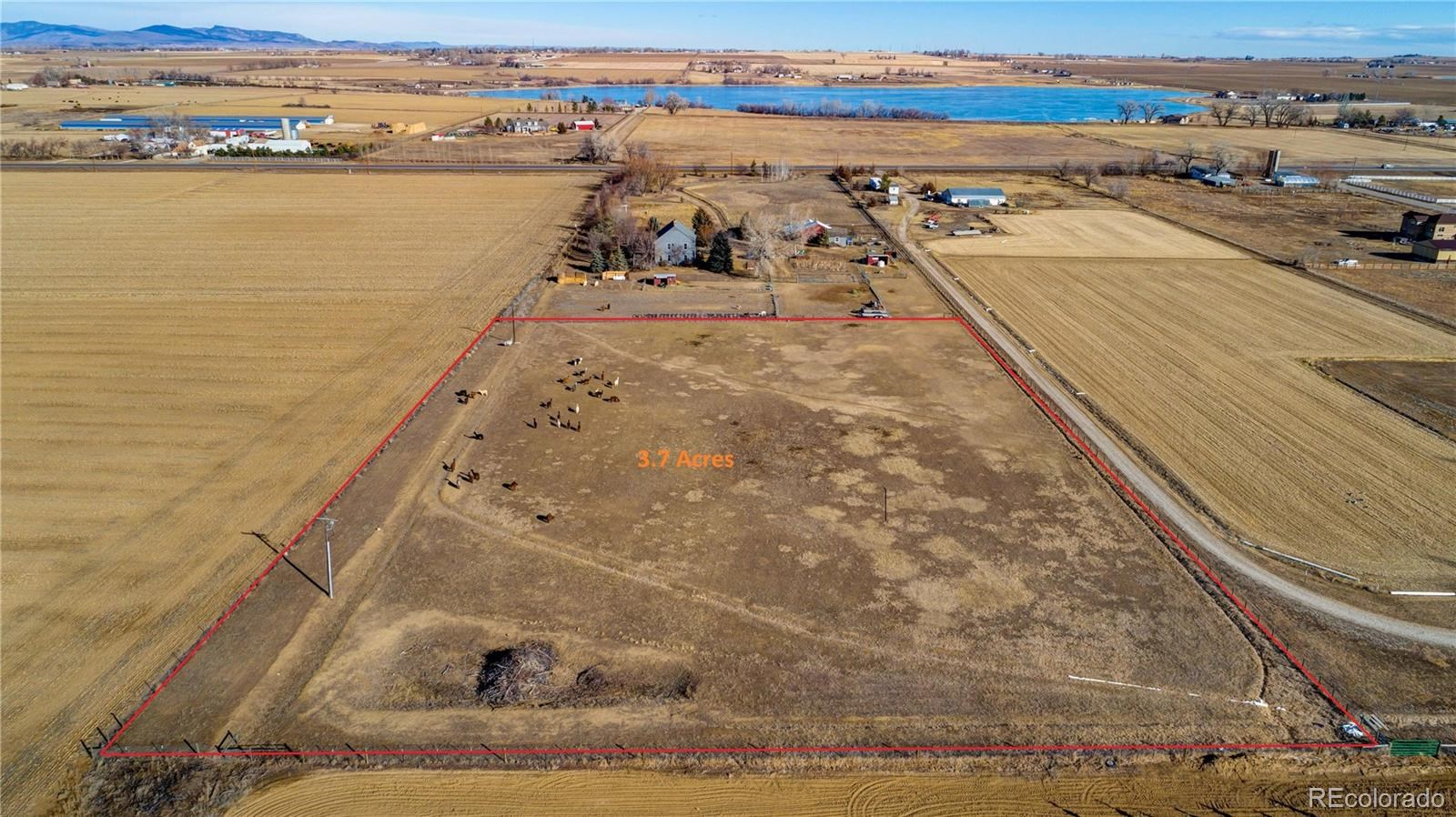 MLS# 3198319 - 3 - 548 E State Highway 56 A , Berthoud, CO 80513