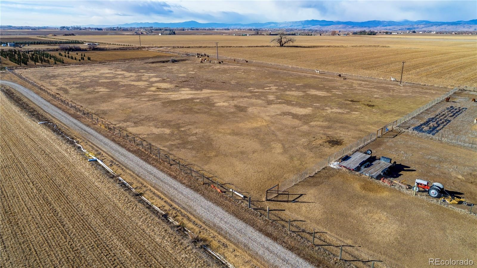 MLS# 3198319 - 5 - 548 E State Highway 56 A , Berthoud, CO 80513