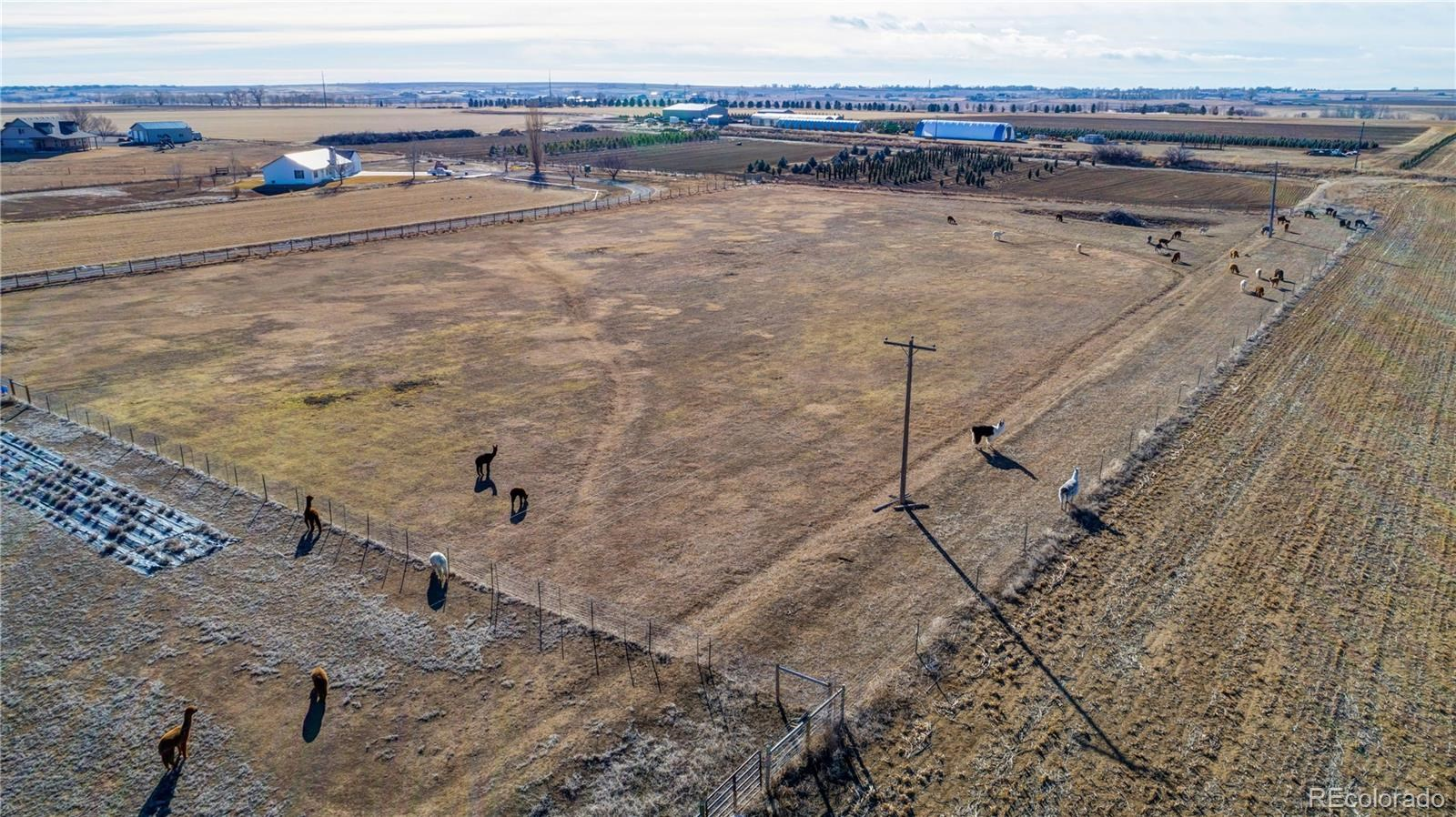 MLS# 3198319 - 6 - 548 E State Highway 56 A , Berthoud, CO 80513