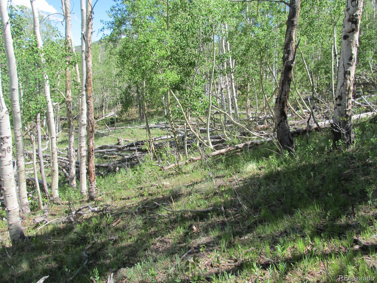 MLS# 3297013 - 2 - Kasihta Trail, Hartsel, CO 80449