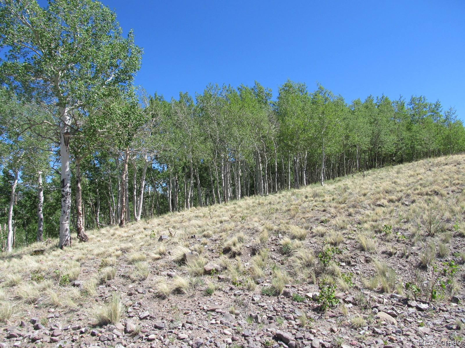 MLS# 3297013 - 4 - Kasihta Trail, Hartsel, CO 80449