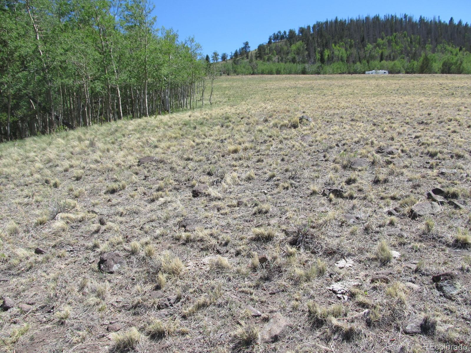 MLS# 3297013 - 5 - Kasihta Trail, Hartsel, CO 80449