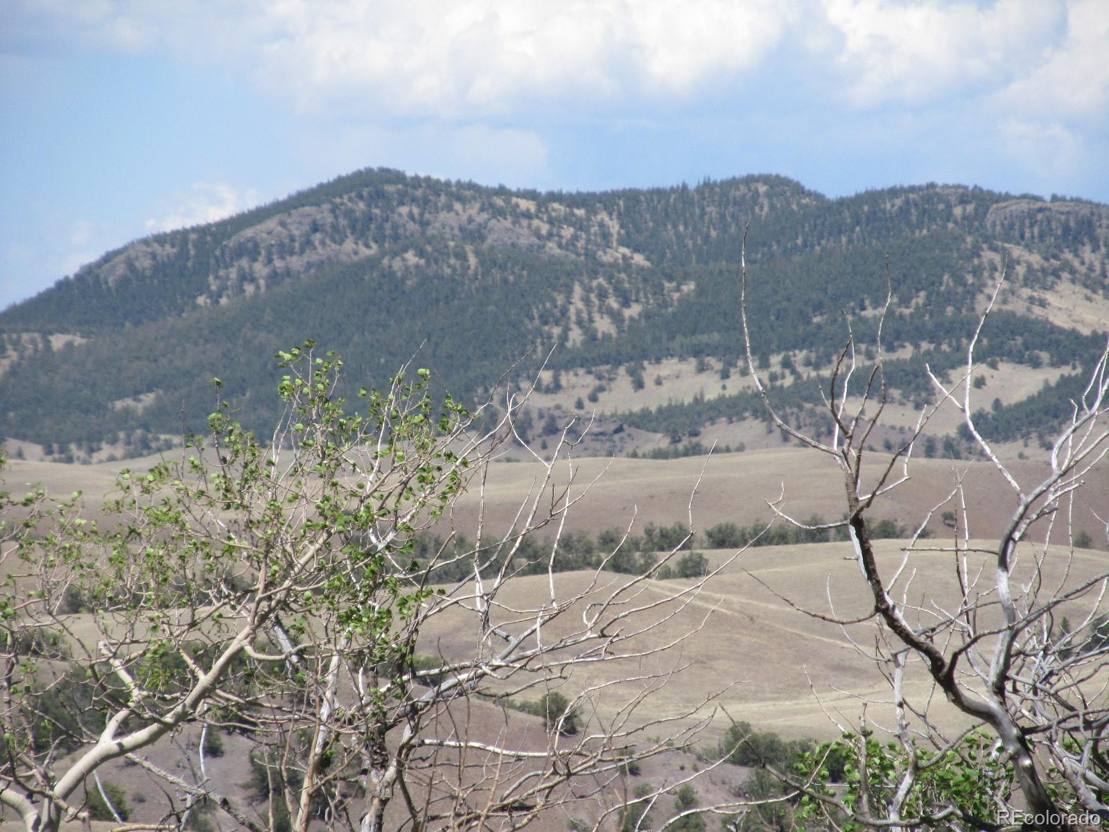 MLS# 3297013 - 8 - Kasihta Trail, Hartsel, CO 80449
