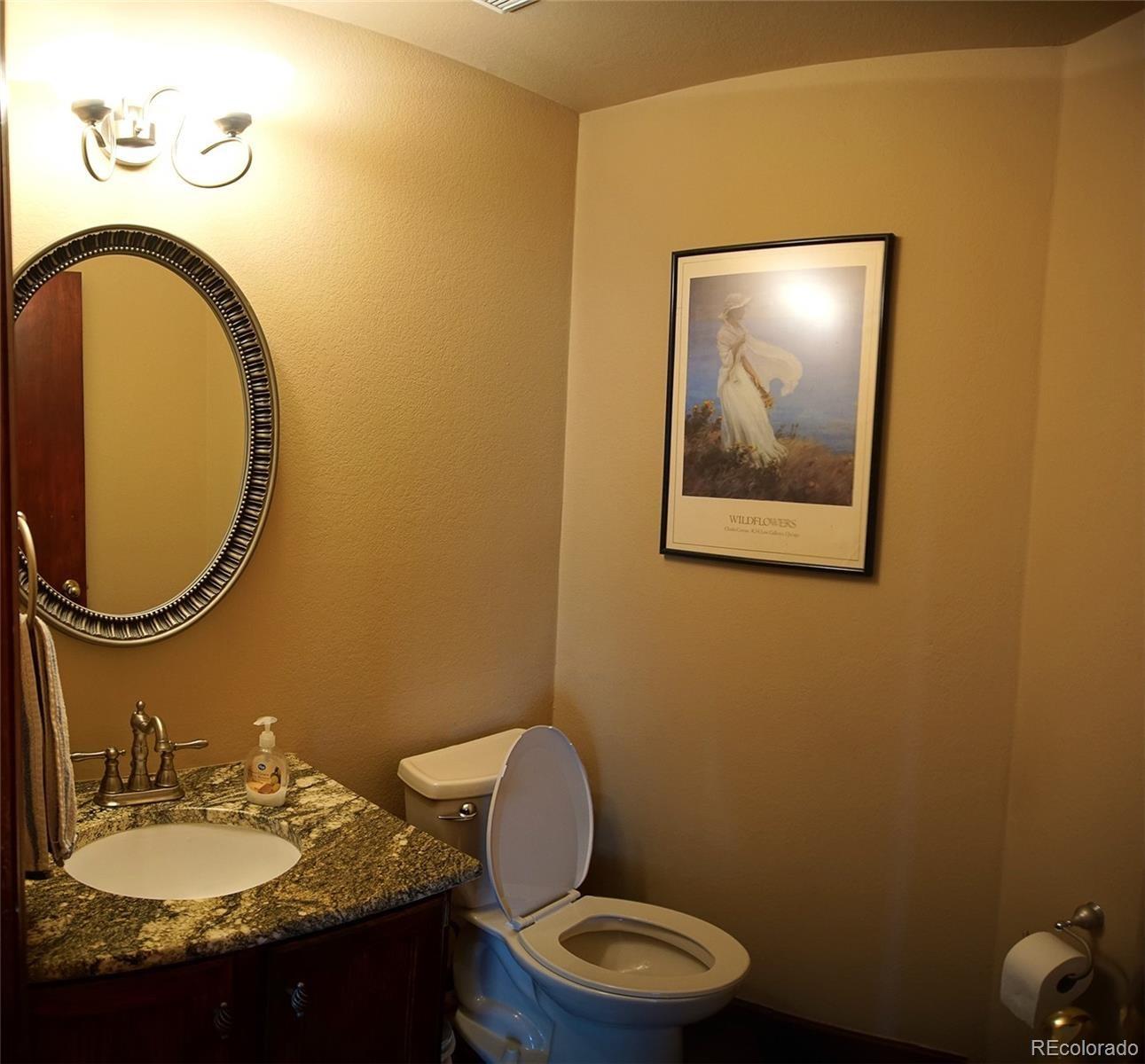 MLS# 3318398 - 9 - 4527 Buena Vista Court, Castle Rock, CO 80109