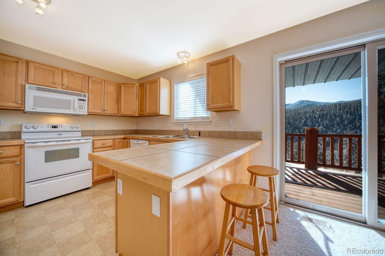 MLS# 3458595 - 4 - 303 Virginia Road #D, Bailey, CO 80421